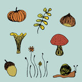 Elementi di autunno Fotografia Stock Libera da Diritti