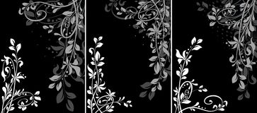 Elementi di disegno Fotografie Stock