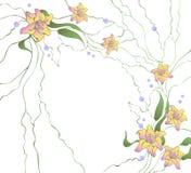 Elementi di disegno dei fiori Fotografia Stock Libera da Diritti