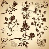 Elementi di disegno dell'annata della Rosa Fotografia Stock Libera da Diritti