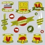Elementi di disegno di agricoltura biologica Fotografie Stock Libere da Diritti