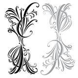 Elementi di disegno e decorazione calligrafici della pagina insieme Immagine Stock