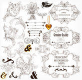 Elementi di disegno e decorazioni calligrafici della pagina Fotografie Stock