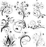 Elementi di disegno floreale Immagine Stock Libera da Diritti