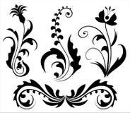 Elementi di disegno floreale Fotografie Stock Libere da Diritti