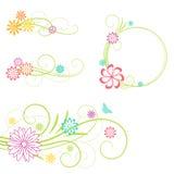 Elementi di disegno floreale. Fotografia Stock