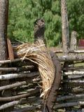 Elementi di legno antichi della famiglia Immagini Stock Libere da Diritti
