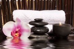 Elementi di massaggio di Bodycare Fotografie Stock