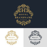 Elementi di progettazione del monogramma, modello grazioso Linea elegante calligrafica progettazione di logo di arte Segni il seg Immagine Stock Libera da Diritti