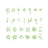 Elementi di progettazione dell'acquerello del fiore Fotografie Stock Libere da Diritti