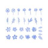 Elementi di progettazione dell'acquerello del fiore Fotografia Stock Libera da Diritti