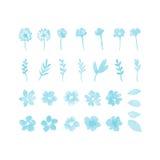 Elementi di progettazione dell'acquerello del fiore Immagine Stock Libera da Diritti