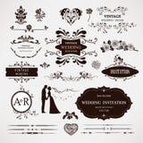 Elementi di progettazione di vettore e decorazione calligrafica della pagina Immagine Stock