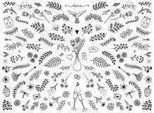 Elementi di progettazione floreale per il giorno del ` s del biglietto di S. Valentino Immagini Stock Libere da Diritti