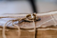 Elementi di progettazione per nozze Fotografia Stock Libera da Diritti