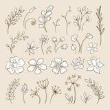 Elementi di scarabocchio per progettazione Fiori, germogli, foglie illustrazione vettoriale