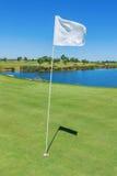 Elementi di una bandiera e di un foro del campo da golf verticale Fotografia Stock Libera da Diritti