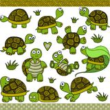 Elementi digitali stabiliti della tartaruga sveglia Fotografia Stock Libera da Diritti