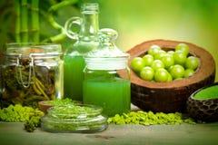 Elementi essenziali per Aromatherapy Fotografie Stock Libere da Diritti
