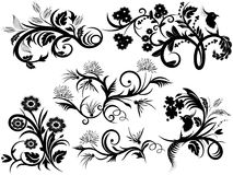 Elementi-florals di disegno Immagini Stock Libere da Diritti