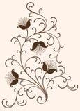 Elementi floreali Immagini Stock Libere da Diritti