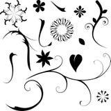 Elementi floreali Fotografia Stock