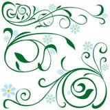 Elementi floreali Immagini Stock