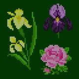 Elementi floreali del giardino del punto trasversale fotografia stock libera da diritti