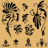Elementi floreali del reticolo per il disegno Fotografie Stock