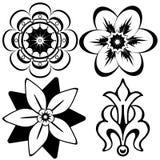 Elementi floreali dell'annata per il disegno (vettore) Fotografia Stock Libera da Diritti