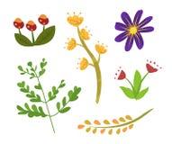 Elementi floreali della primavera o dell'estate, flora del fogliame royalty illustrazione gratis