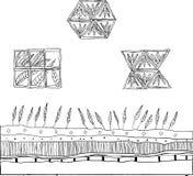 elementi floreali di doodle Immagini Stock