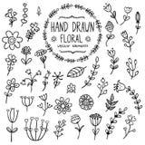 Elementi floreali disegnati a mano per la vostra progettazione Fotografie Stock Libere da Diritti