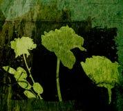 Elementi floreali sul contesto del grunge Fotografie Stock Libere da Diritti