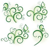 Elementi floreali verdi Fotografia Stock
