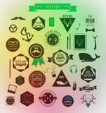 Elementi, icone ed etichette di stile dei pantaloni a vita bassa Immagine Stock