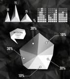 Elementi moderni dei grafici di informazioni Fotografie Stock Libere da Diritti