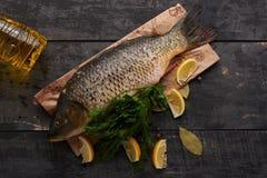 Elementi per la cottura della carpa del pesce Fotografie Stock