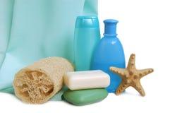 Elementi per pulizia Immagini Stock