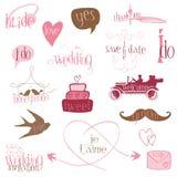 Elementi romantici di disegno di cerimonia nuziale Fotografia Stock