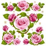 Elementi rossi di disegno della Rosa Immagine Stock Libera da Diritti