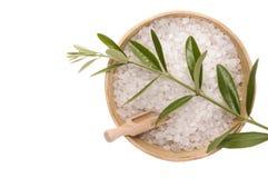 Elementi verde oliva del bagno. alternativa Fotografia Stock