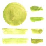 Elementi verde oliva dell'acquerello Fotografia Stock Libera da Diritti