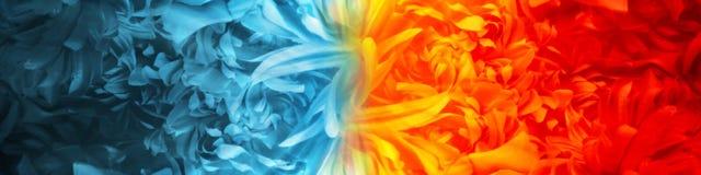 Elemento abstracto del fuego y del hielo creado de los pétalos de la flor usando tema del color contra contra uno a fondo stock de ilustración