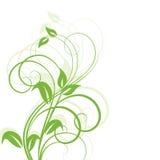 Elemento abstrato floral do projeto Imagem de Stock