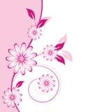 Elemento abstrato floral do projeto Fotografia de Stock