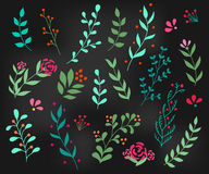 Elemento adornado de la decoración del Flourish Foto de archivo libre de regalías