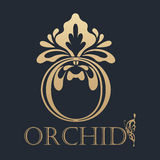 Elemento caligráfico do projeto Logotipo dourado Imagem de Stock Royalty Free