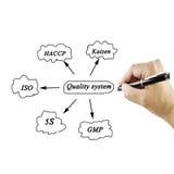 Elemento da apresentação do sistema de qualidade (iso, PBF, haccp, 5s, kaiz Fotografia de Stock Royalty Free
