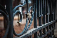 Elemento da cerca do ferro Imagens de Stock